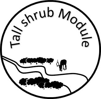 tall-shrub-module